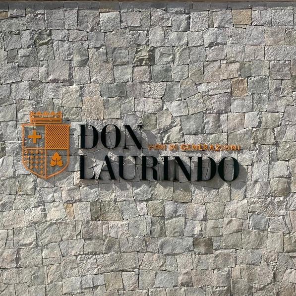 Don Laurindo com vista do vinhedo